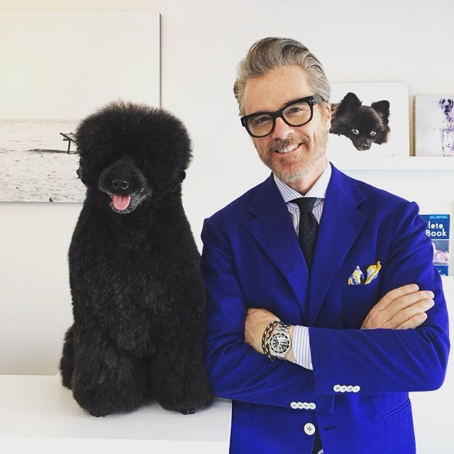 Mr. David & VICTORE#プードル #ミディアムプードル #プードルカット #トリミングサロン #学芸大学  #目黒区  #model #leon #grooming #poodle