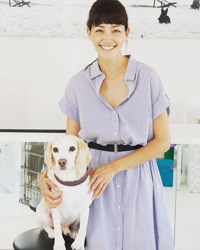 MODELのRINAが愛犬BOBBYを連れて来てくれました抜け毛コース#びーぐる #dog#トリミングサロン #rina #学芸大学#モデル#ドゴールド
